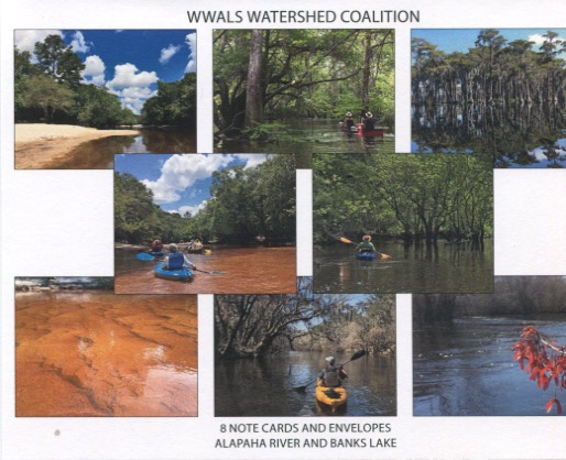 Alapaha River and Banks Lake notecards