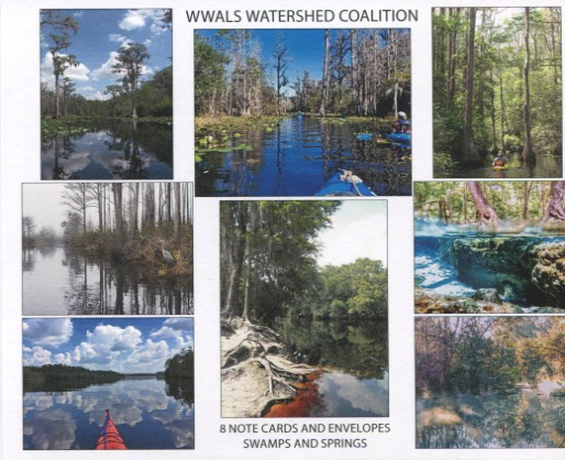 Swamps and Springs WWALS picture notecards