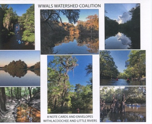 Withlacoochee and Little Rivers note cards
